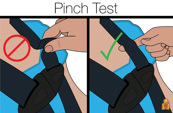 128afda6d75cf Car seat pinch test. © American Academy of Pediatrics. Source   healthychildren.org